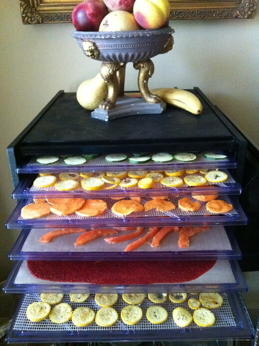 The Excalibur Dehydrator