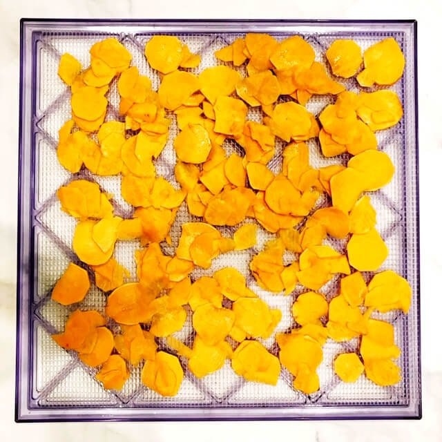 A square mesh dehydrator tray filled with sliced sweet potato chips ready to be dehydrated