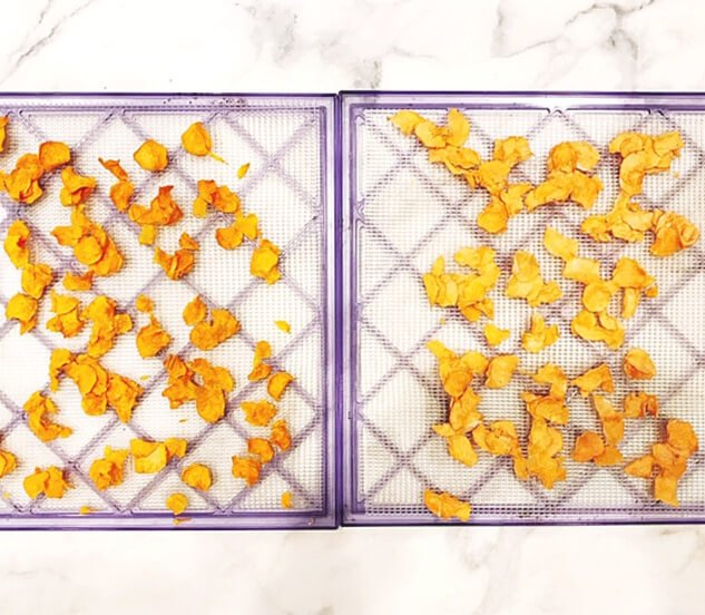 Two dehydrator trays side by side showing two different ways to prepare Gluten-Free Vegan Dehydrated Sweet Potato chips - one with avocado oil and the other with water