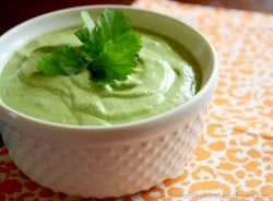 Raw-Hemp-Cilantro-Dressing