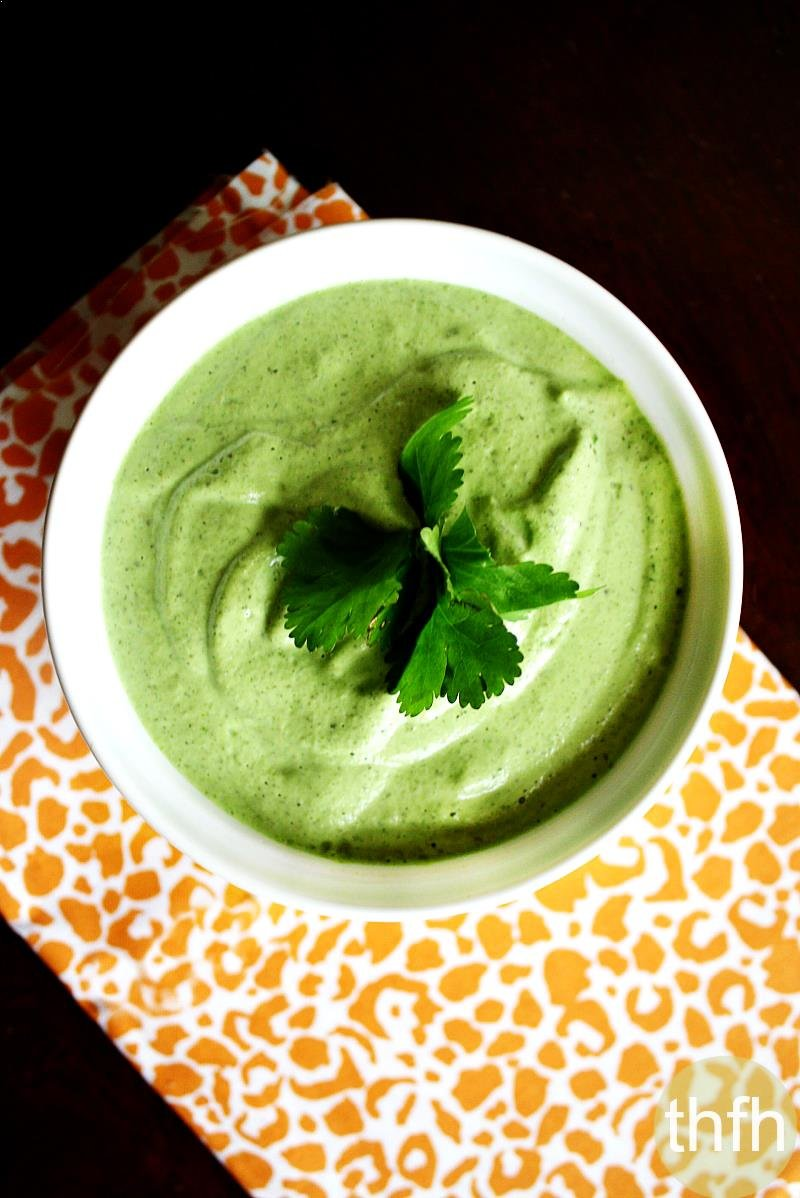 Creamy Raw Hemp Seed and Cilantro Dressing   The Healthy Family and Home