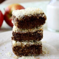 Vegan Cacao Almond Baked Breakfast Quinoa Squares | The Healthy Family and Home
