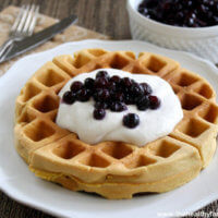 Gluten-Free-Vegan-Belgian-Waffles