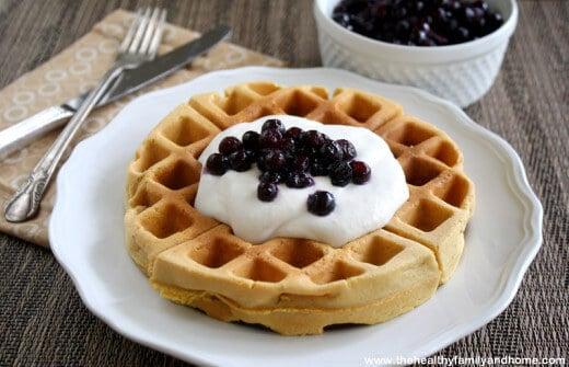 Gluten-Free Vegan Belgian Waffles (Vegan, Gluten-Free, Grain-Free, Dairy-Free, No Refined Sugar)
