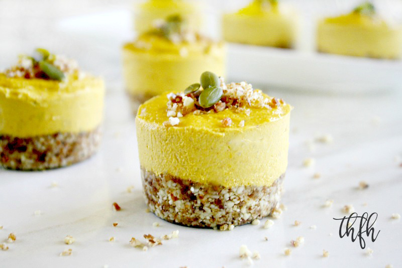 A close-up image of an individual Gluten-Free Vegan No-Bake Pumpkin Mini Cheesecake without homemade whipped coconut topping