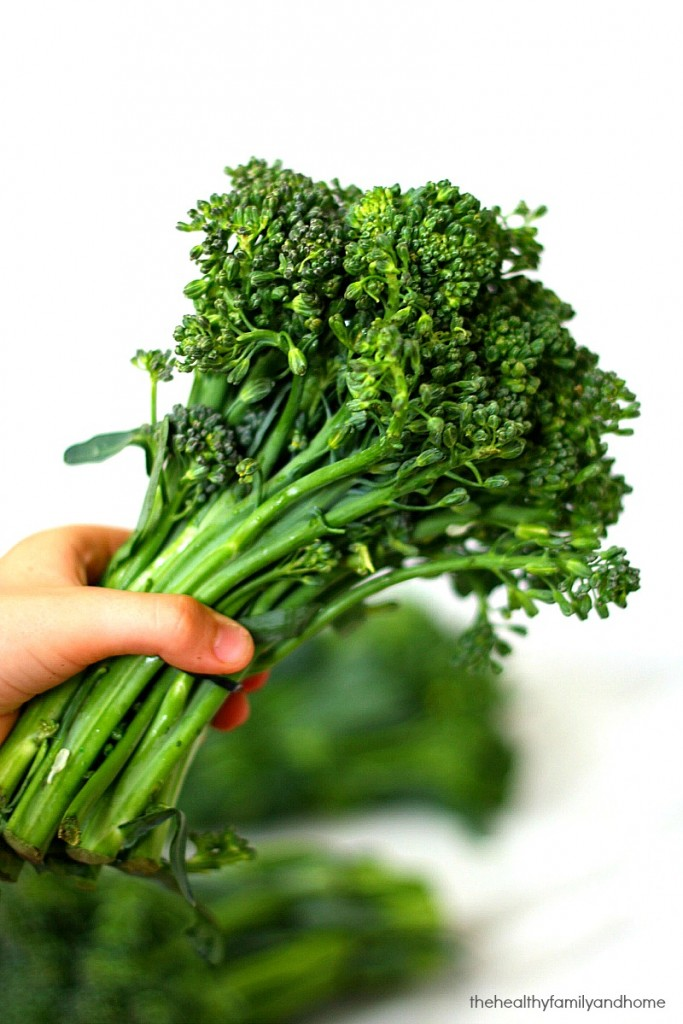 A hand holding a bunch of broccolini against a white background