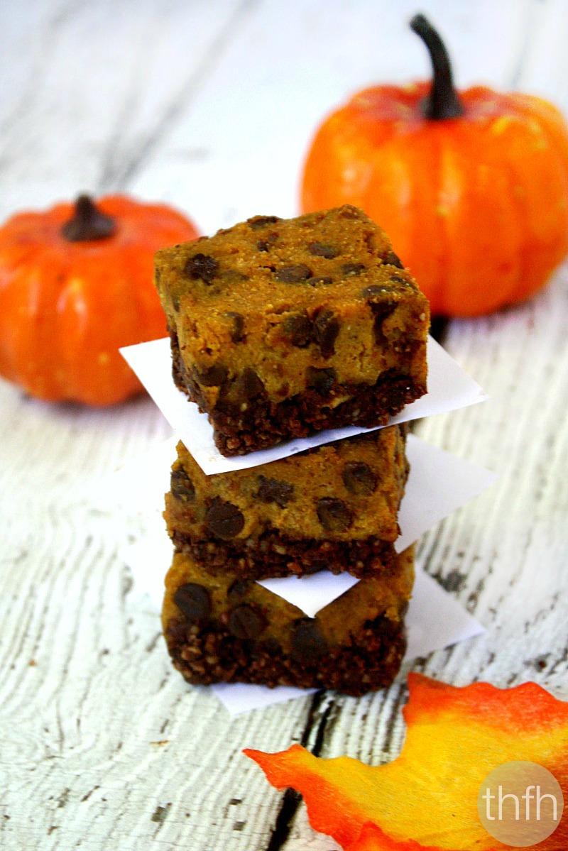 Clean Eating Chocolate Chip Pumpkin Bars | Vegan, Gluten-Free, Dairy-Free, Paleo, No Bake, No Refined Sugar