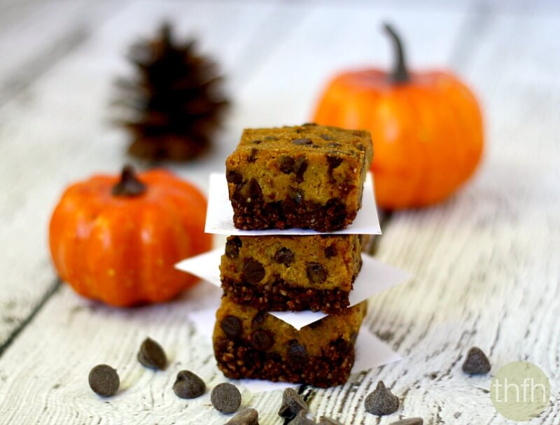 Clean Eating Chocolate Chip Pumpkin Bars - Vegan, Gluten-Free, Dairy-Free, Paleo-Friendly, No-Bake, No Refined Sugar | The Healthy Family and Home