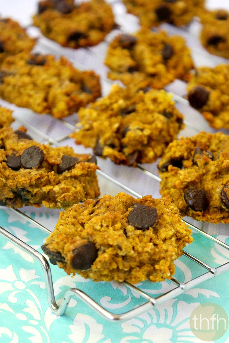 Completely Sugar Free Pumpkin Oatmeal Cookies Recipes — Dishmaps