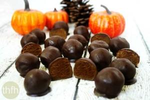 "Clean Eating Pumpkin Truffles (""Almost Raw"", Vegan, Gluten-Free, Dairy-Free, Paleo-Friendly, No Refined Sugar)"
