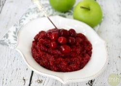 Clean Eating Cranberry Sauce - Raw, Vegan, Gluten-Free, Dairy-Free, Paleo-Friendly, No Refined Sugars | The Healthy Family and Home
