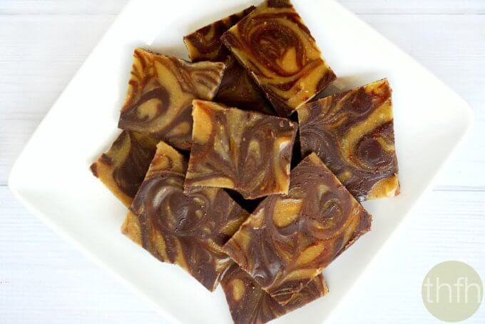 Chocolate Peanut Butter Swirl Bark (Raw, Vegan, Gluten-Free, Dairy-Free, Paleo-Friendly,  No Refined Sugar)