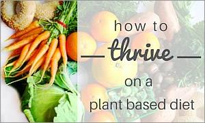 How To Thrive On A Plant-Based Diet
