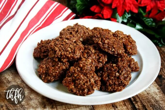 Gluten-Free Vegan Chocolate Peanut Butter Oatmeal No-Bake ...