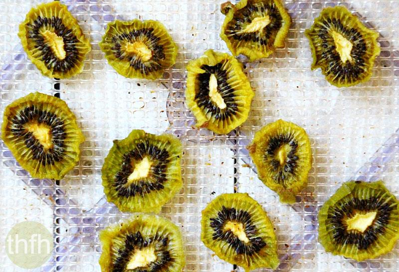 Chocolate Covered Dehydrated Kiwi   The Healthy Family and Home