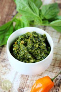 Vegan Habanero and Basil Pesto   The Healthy Family and Home