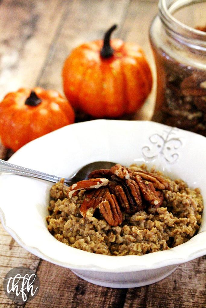 Food Dehydrator Recipes Turkey Jerky