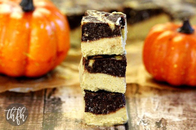 Vegan Chocolate Marbled Swirl Pumpkin Cheesecake Squares (Vegan, Gluten-Free, Dairy-Free, Egg-Free, No-Bake, Paleo-Friendly, No-Refined Sugar)