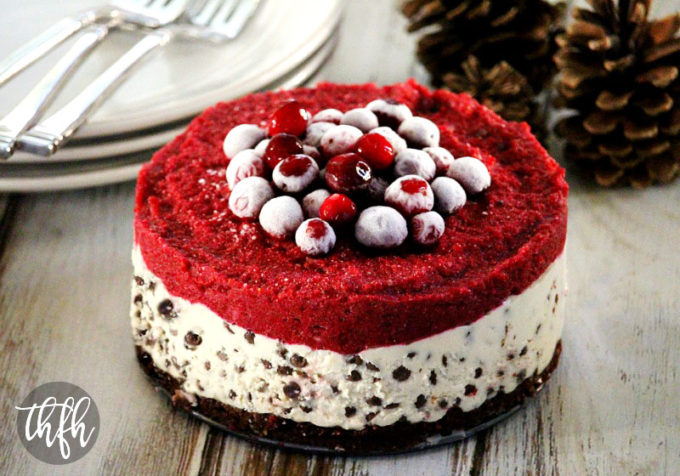 Vegan No-Bake Chocolate Chip Cranberry Cheesecake (Vegan, Gluten-Free, Dairy-Free, Egg-Free, Soy-Free, No-Bake, Paleo-Friendly, No Refined Sugar)
