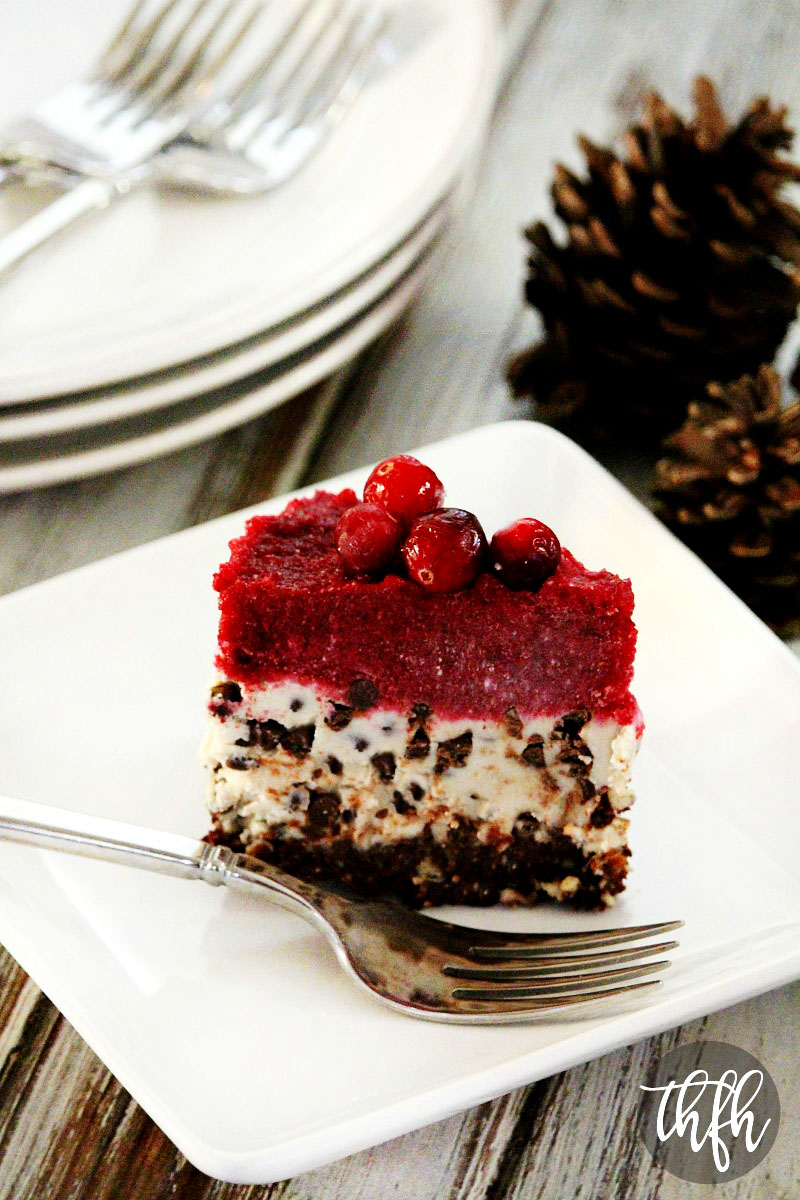 Vegan No-Bake Chocolate Chip Cranberry Cheesecake | The Healthy Family and Home
