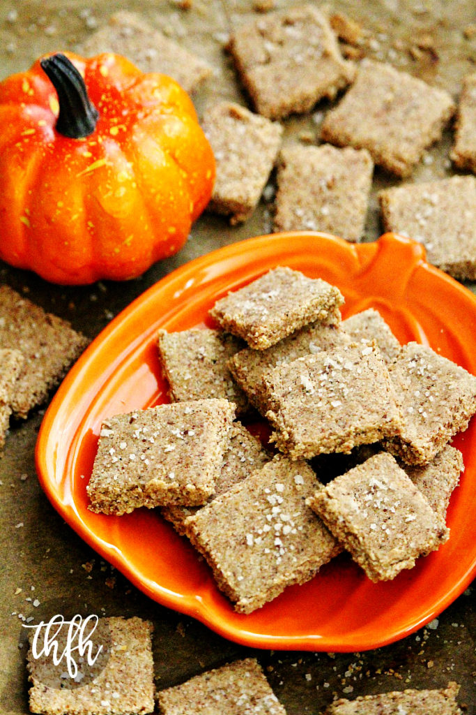 Gluten-Free Vegan Flourless Pumpkin Spice Crackers with Sea Salt
