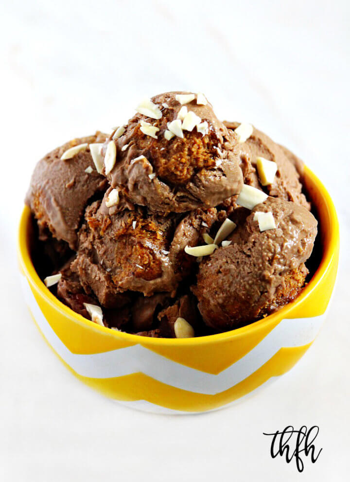 Lectin-Free Vegan Chocolate Avocado Ice Cream with Almond Butter Swirl
