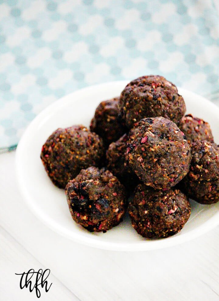 Gluten-Free Vegan Dried Blueberry Protein Energy Balls