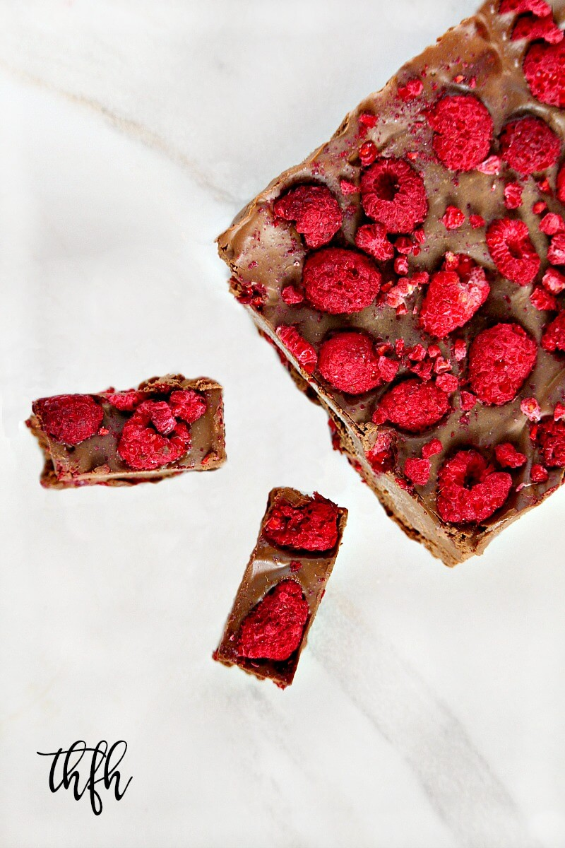 Lectin-Free Vegan Raspberry and Chocolate Ice Cream Squares | The Healthy Family and Home