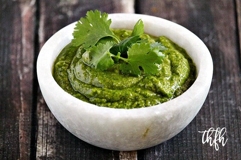 Lectin-Free Vegan Cilantro Pesto   The Healthy Family and Home