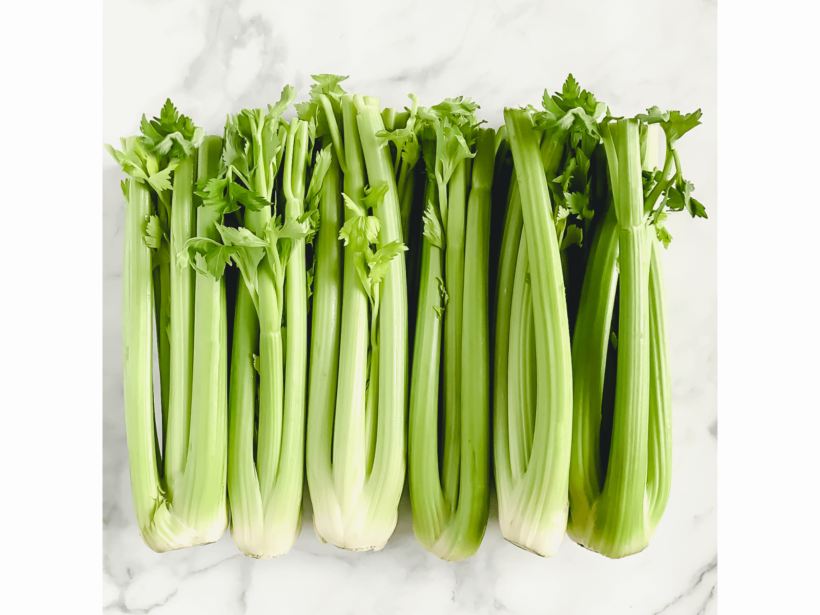 Horizontal image of organic raw celery on a white marble surface