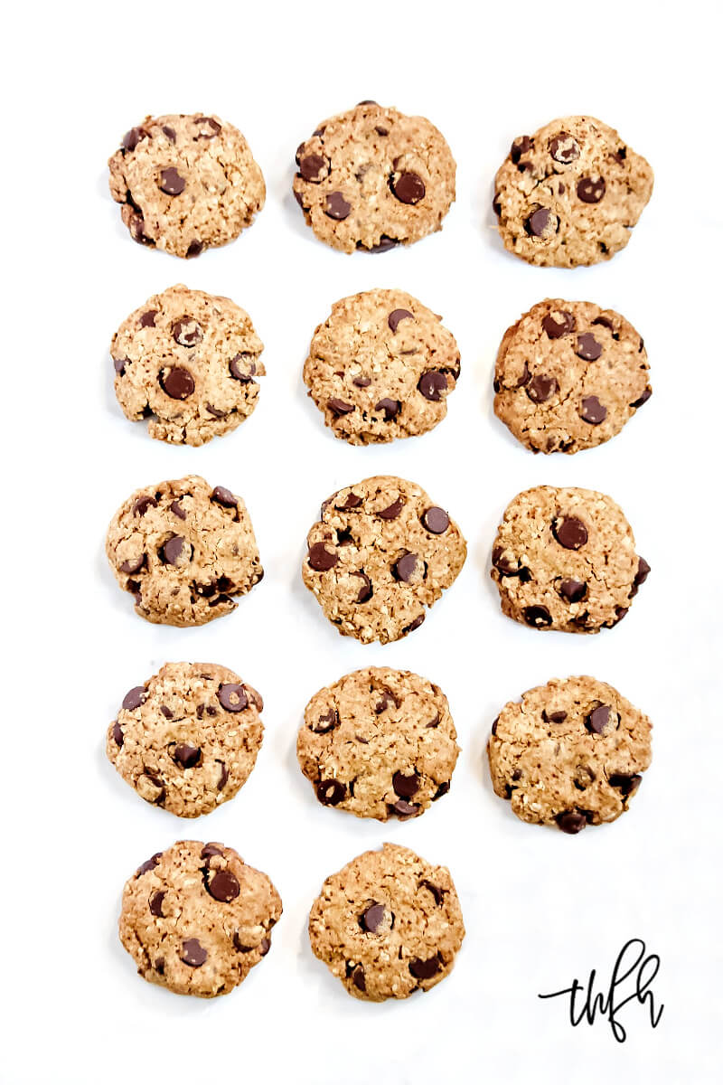 Overhead image of The BEST Gluten-Free Vegan Chocolate Chip Oatmeal Cookies spaced evenly on a solid white background