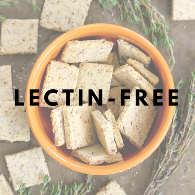 Lectin-Free Recipes